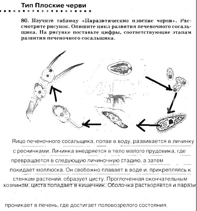 Рассмотрите рисунок на с.38 биология 7 класс